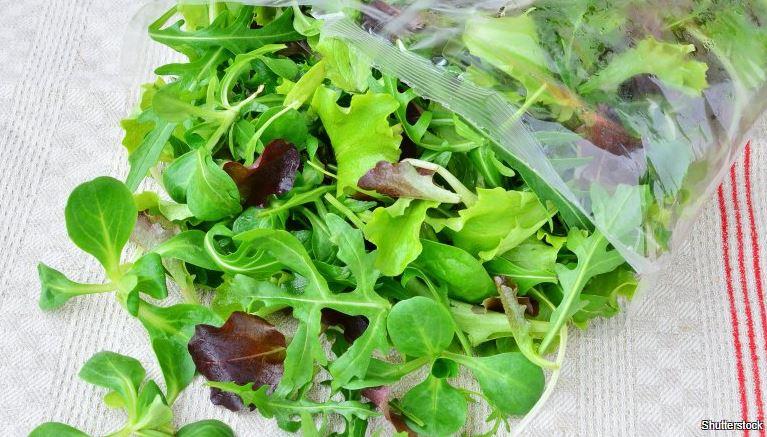 jak udržet čerstvý salát